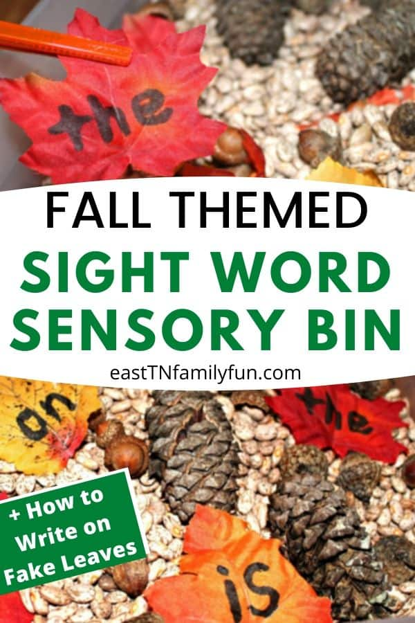 Fall Themed Sight Word Sensory Bin