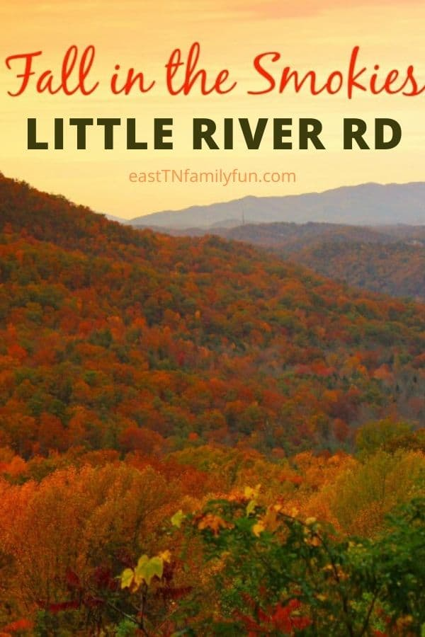 Little River Road Townsend