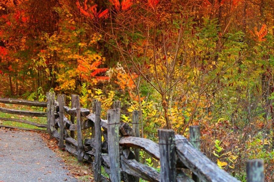 Townsend TN in Fall