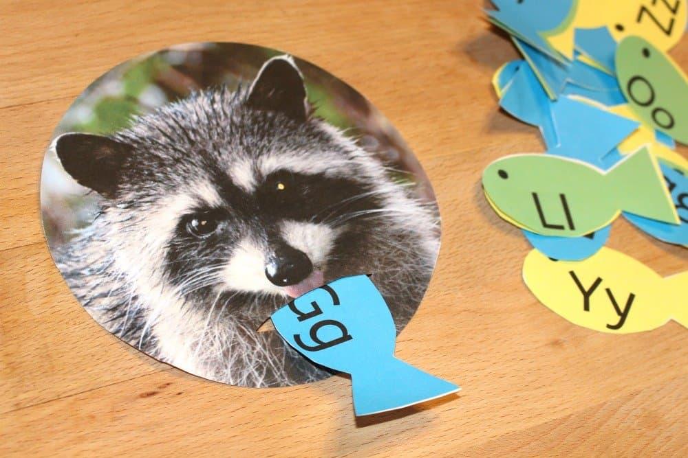 Feed The Raccoon, Mom explores The Smokies 6