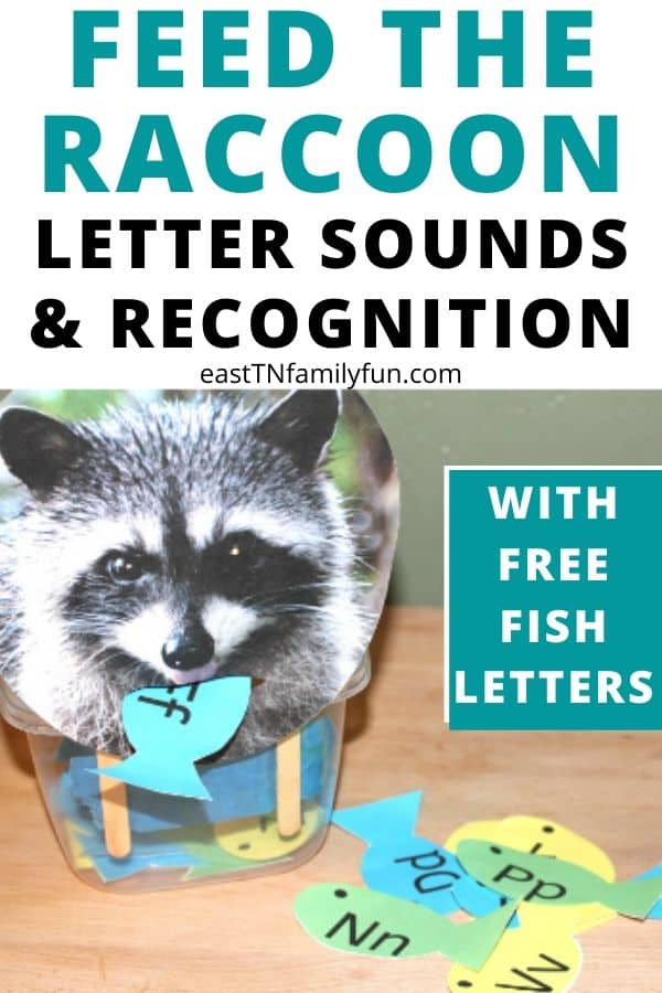 Feed The Raccoon Printable Letter Identification Activity