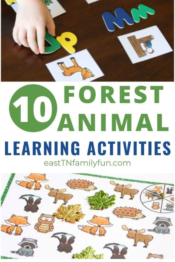 Forest Animal Learning Activities for Kids