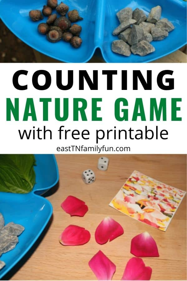 Printable Nature Counting Game