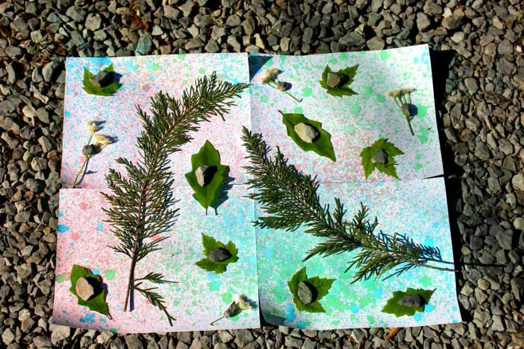 Spray Bottle Nature Art With Printable Science Extension, Mom Explores The Smokies
