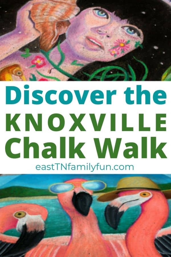 Knoxville Chalk walk