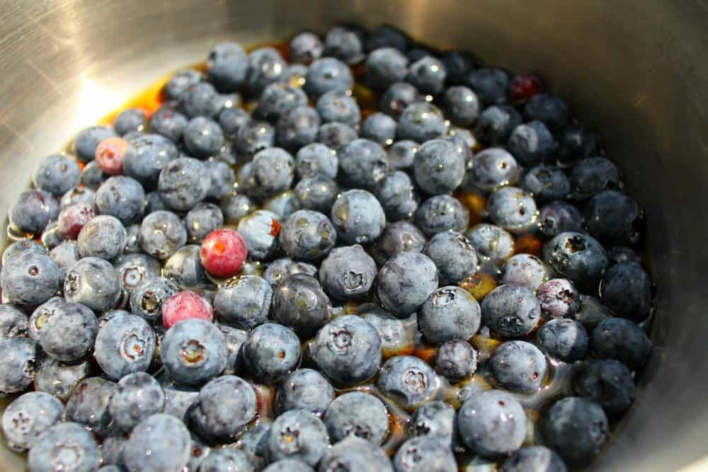 2 Ingredient Blueberry Syrup, Mom Explores The Smokies
