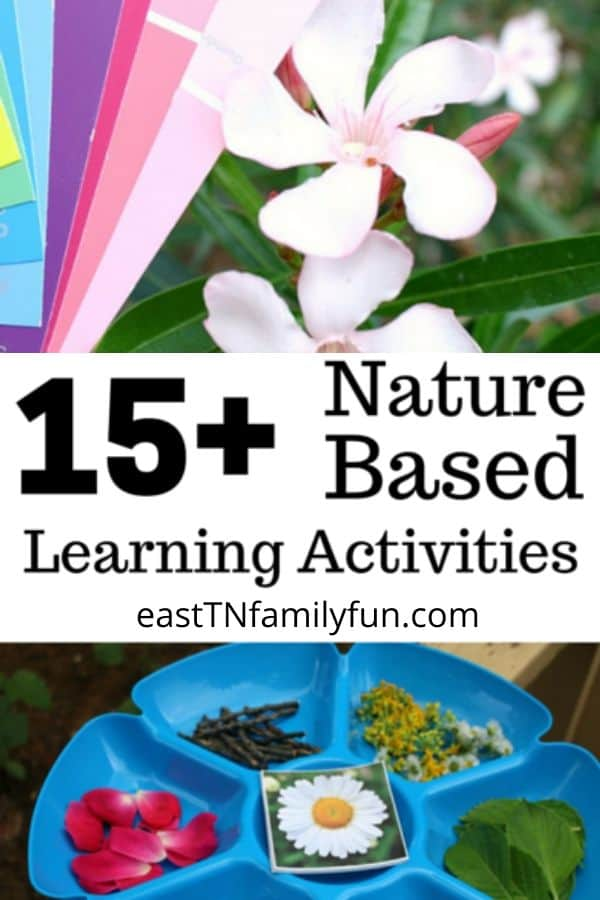 Nature Learning Activities for Kids