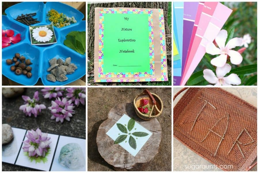 nature learning activities