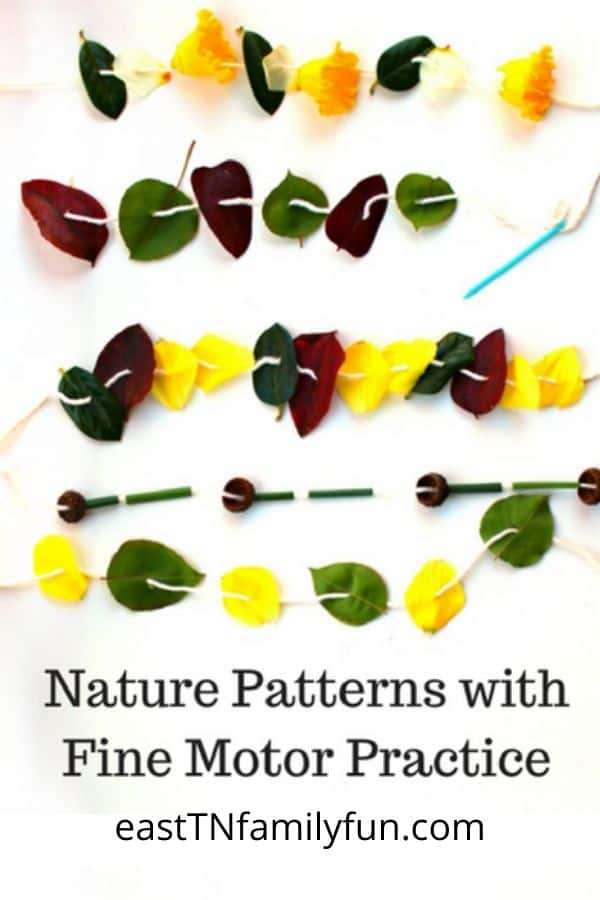 Nature Patterns for Kids