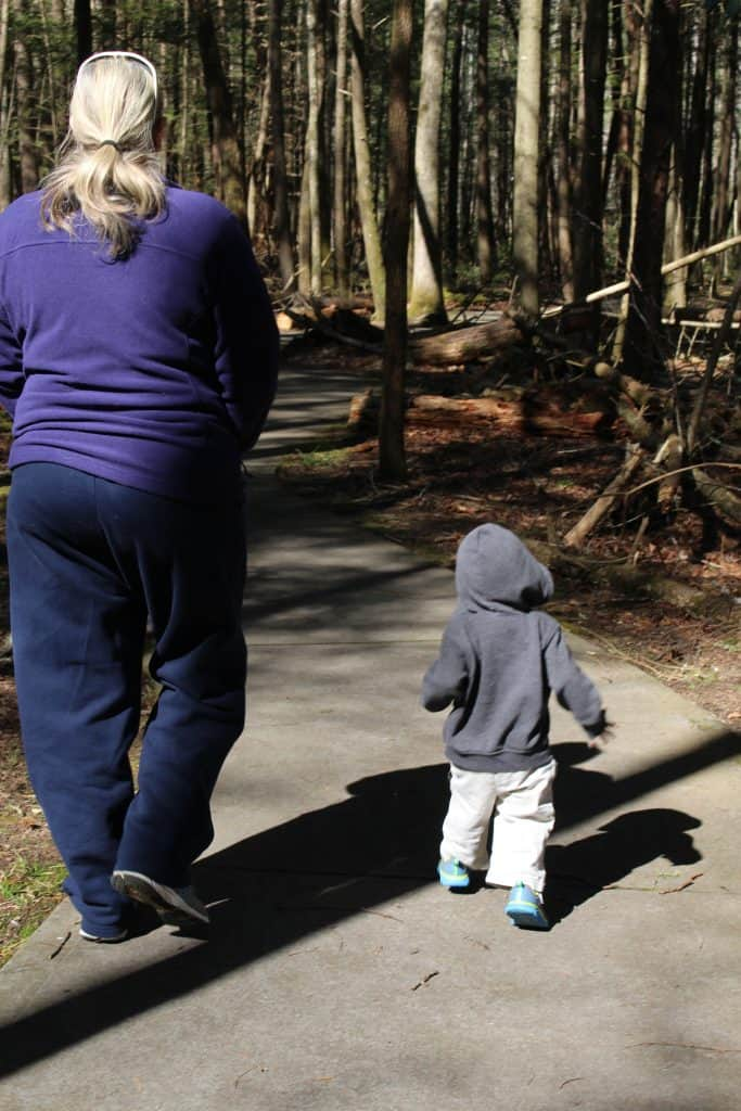 Sugarlands Valley Nature Trail , Mom Explores The Smokies