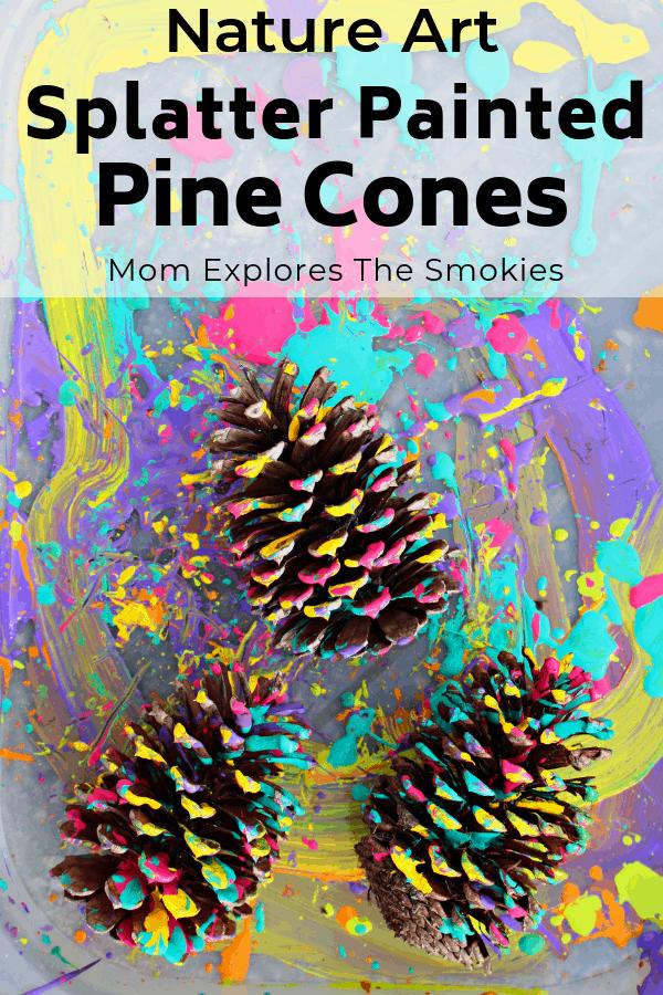 Pine Cone Craft Splatter Painting East Tn Family Fun