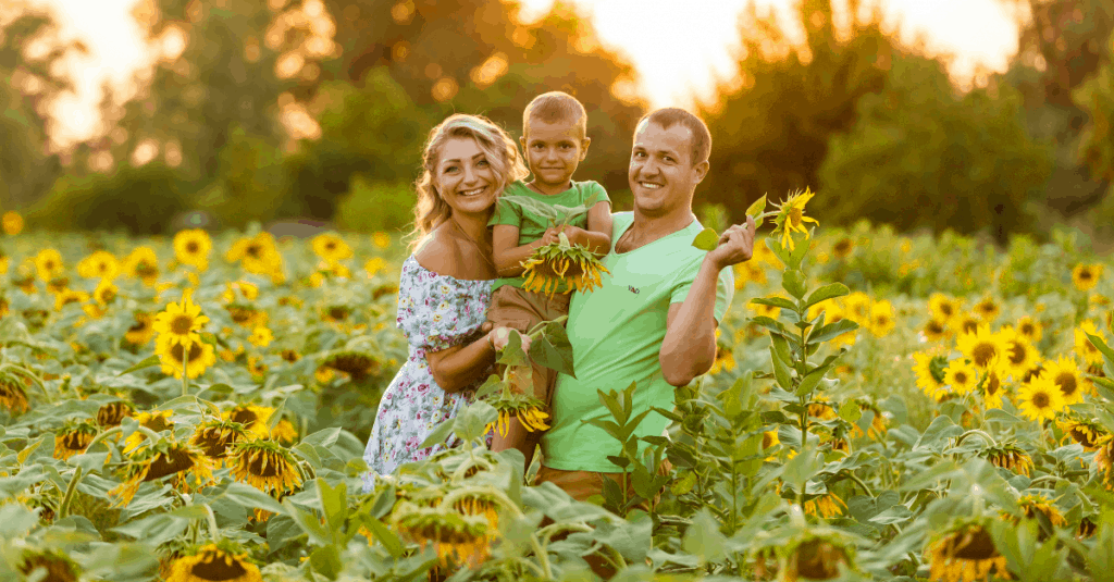 Best East TN Sunflower Fields Including Knoxville, Chattanooga and Tri-Cities