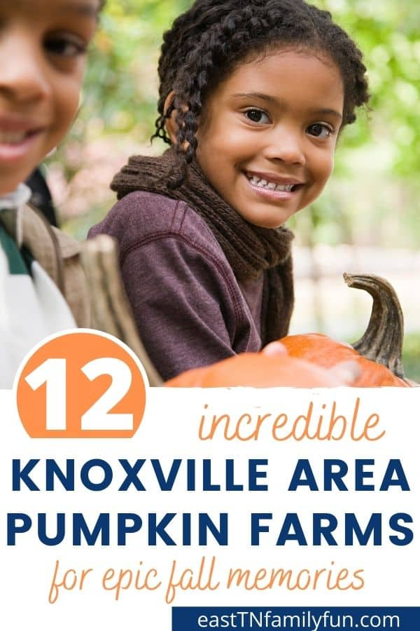 Best Pumpkin Patches in Knoxville TN