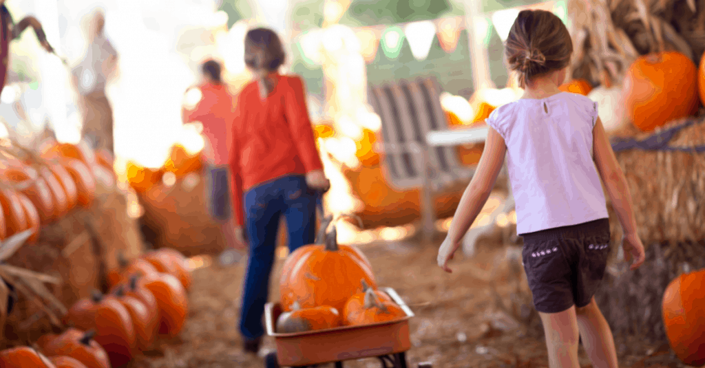 Pumpkin Patches Near Johnson City TN, Kingsport TN, Bristol TN, and Beyond!