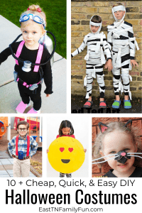 10 + Halloween Costumes Cheap and Easy