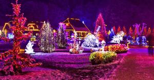 Christmas Lights in Bristol, Kingsport, Johnson City TN