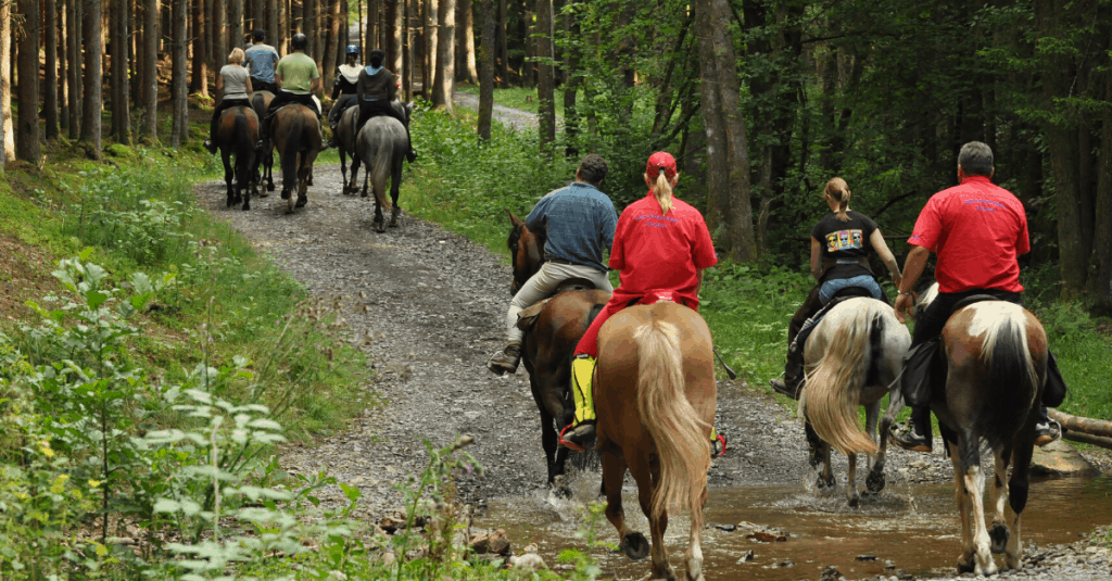 horseback riding locations in Cherokee National Forest, TN