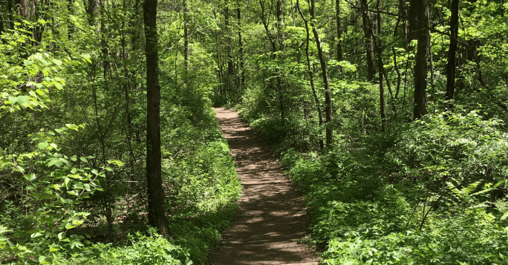 Maryville College Woods Hiking Trail, Maryville TN