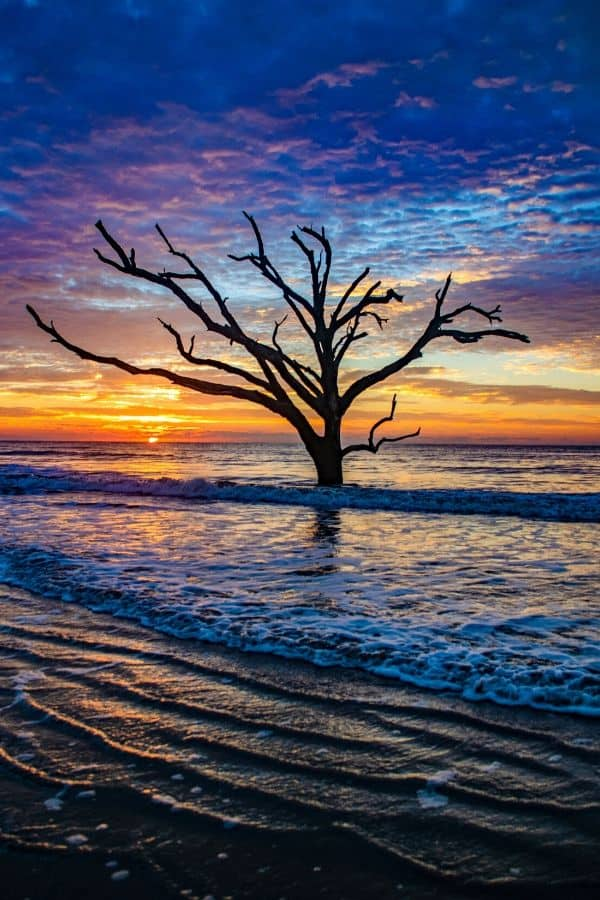 Edisto Island Beach South Carolina is one of 16 Southern US beaches to add to your travel bucket list.