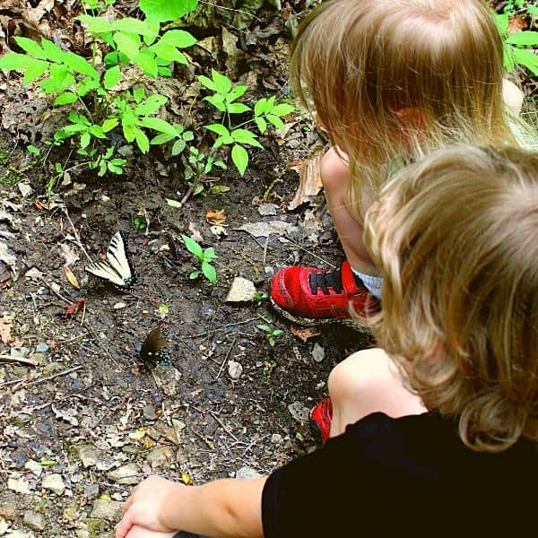 hiking near Pigeon Forge with toddlers