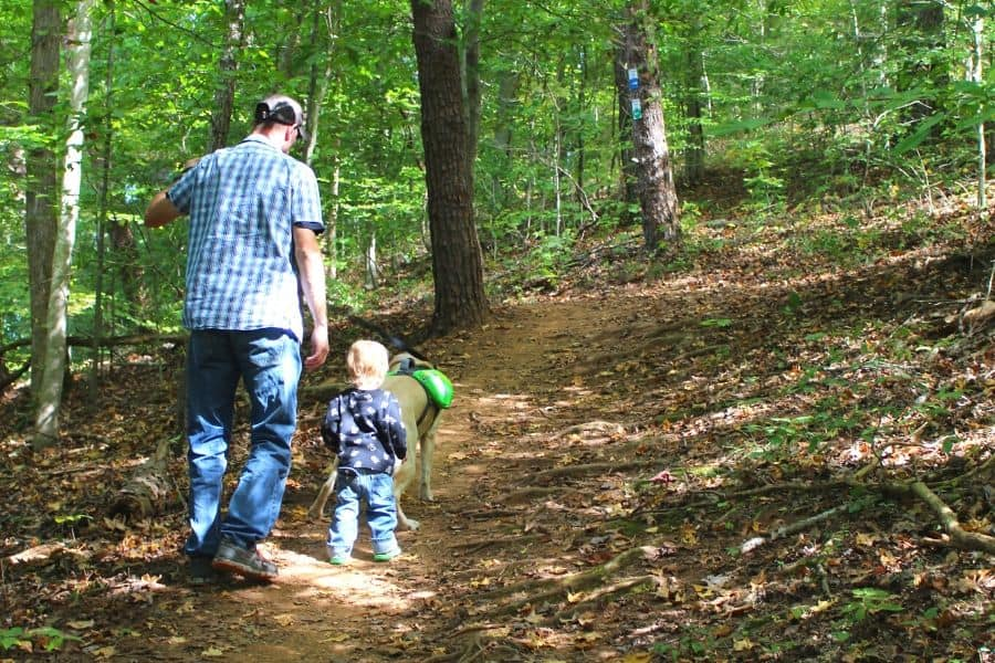 father and son hiking in Knoxville TN