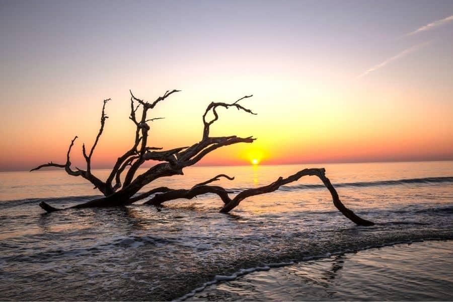 Ocean Beaches Near Knoxville, TN: Jekyll Island. GA