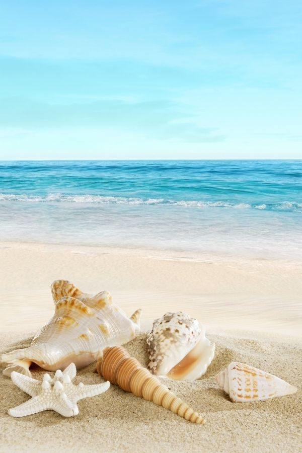 20 Closest Beaches to Knoxville TN