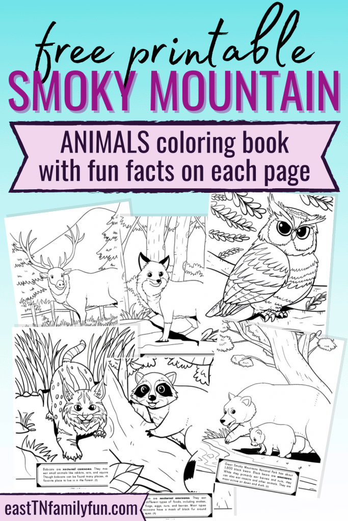 Smoky Mountain Coloring Pages