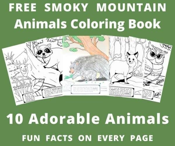 10 Free Smoky Mountain Coloring Pages East Tn Family Fun