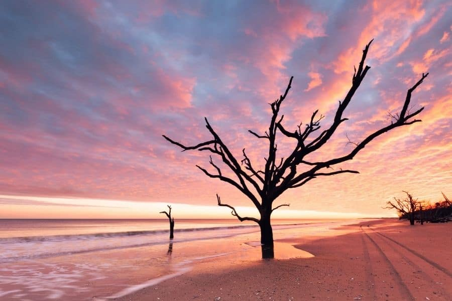 Botany Bay at Edisto Island Beach, SC