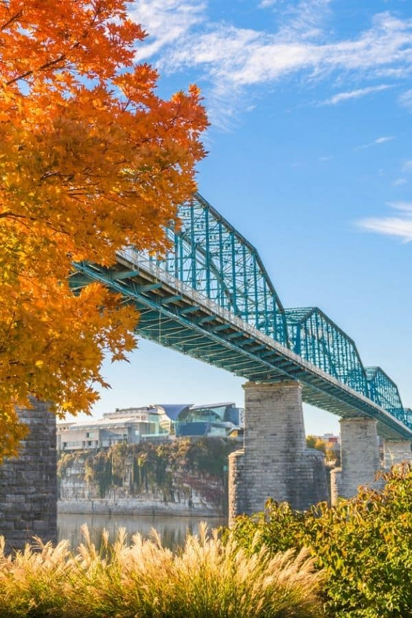 Things to do in Chattanooa TN
