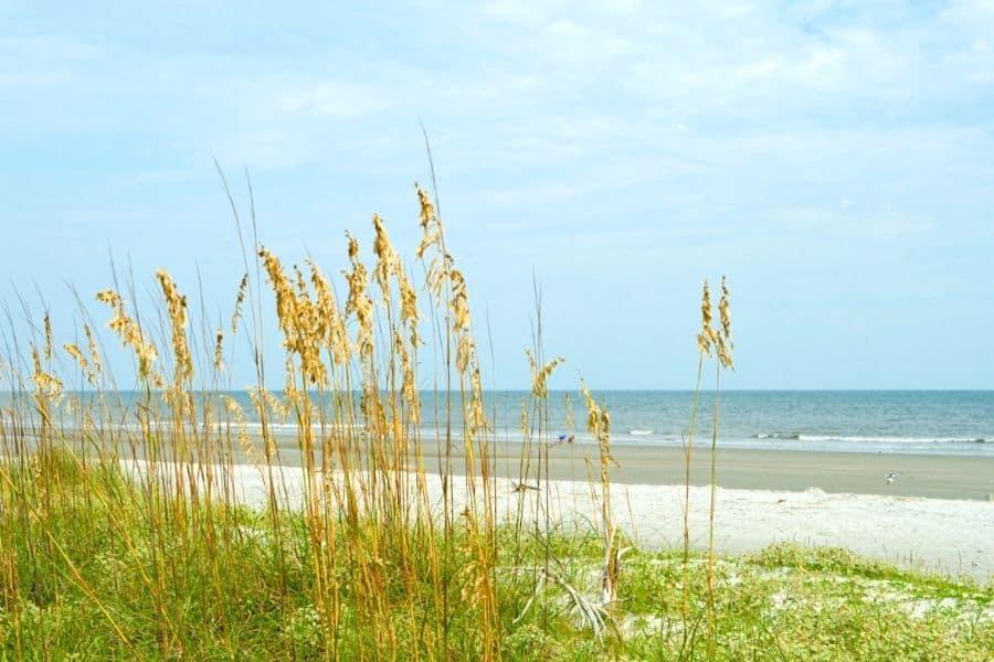 Sand Dunes at Hilton Head South Carolina